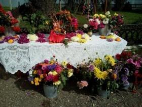 Праздник цветов в д. Большекызылбаево.