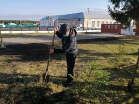 Благоустройство сельского поселения.